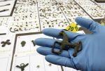 EL País_Un jubilado expolió 4.000 piezas celtíberas